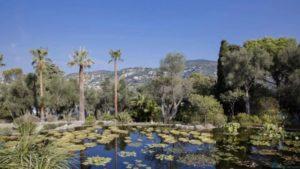 «Villa Les Cèdres» продается всего за 315 миллионов
