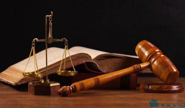 Совместные собственники земельного участка решили точно определить его границы и через суд потребовали от соседей провести размежевание.
