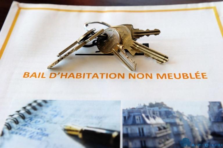 Новый договор аренды для физических лиц